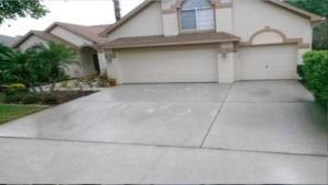 driveway pressure cleaning Palm Harbor