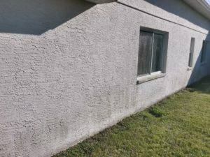 house wash in New Port Richey. Before