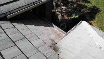 Gutter cleaning Service In Palm Harbor
