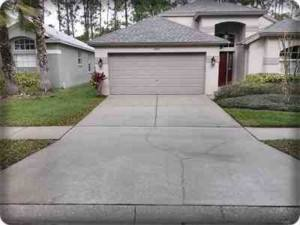 pressure washing safety harbor-driveway